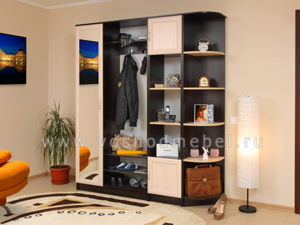 Нечка 1 + со стеллажом и шкафом