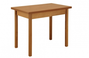 stol-obedennyj-raskladnoj-pryamaya-noga.340x600