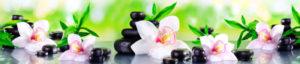 AF 45 - Бамбук и орхидея
