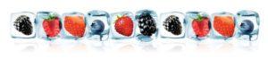 F 40 - ягоды во льду