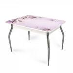 stol-razdvizhnoj