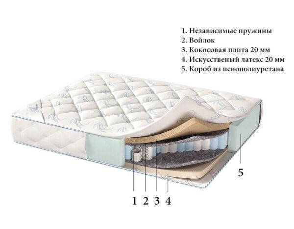 matras-livorno-1